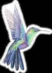 Hummingbird Watercolor Drawing Bright Multicolor Sticker