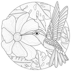 Hummingbirds And Flowers Coloring Book Sticker