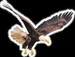 Hunting Bald Eagle Sticker