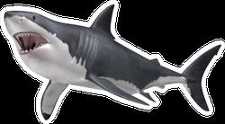 Hunting Great White Shark Sticker