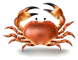 Illustration Crab In Realistic Style Sticker