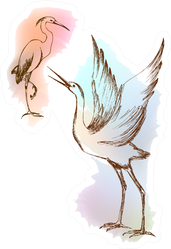 Illustration Heron Crane With Colorful Paint Sticker