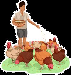 Illustration Of A Farm Boy Feeding Free Range Chickens Sticker