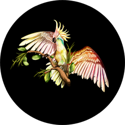 Illustration Of Cockatoo On The Tropical Branches With Leaves Sticker