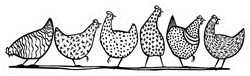 Illustration Of Hand Drawn Chickens In A Line Sticker