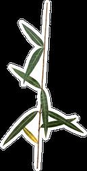 Illustration Of Leaf On White Background Sticker