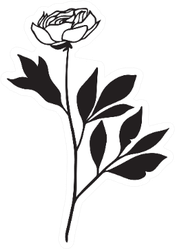 Illustration Of Rose With long Stem And Leaves Sticker