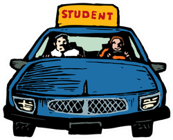 Illustration Of Teen Girl Student Driver Sticker