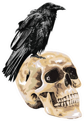 Illustration Of The Black Crow Sitting On Skull Sticker