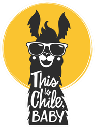 Illustration With Llama In A Sunglasses And Lettering Sticker