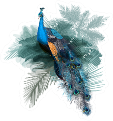 Illustration With Realistic Peacock Bird On Palm Jungle Sticker