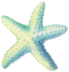 Illustrations Of Underwater Life Objects - Blue Starfish Sticker