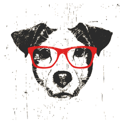 Jack Russel Terrier with Red Glasses Sticker