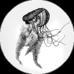Jellyfish B+w Sticker