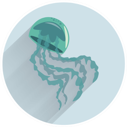 Jellyfish Colorful Flat Icon Circle Sticker