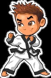 Karate Martial Arts Tae Kwon Do Dojo Sticker