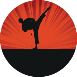 Karate Silhouette Vibrant Background Sticker