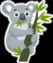 Koala Bear On Eucalyptus Branch Sticker