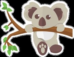 Koala Climbing Tree Sticker