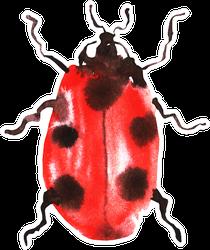Ladybug Watercolor Sticker