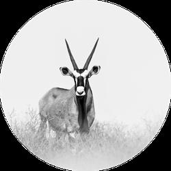 Large Antelope In Nature Habitat Sticker