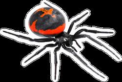Latrodectus Tredecimguttatus Spider Sticker