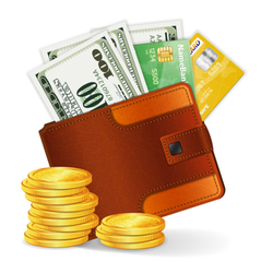 Leather Wallet with Lots of Money Sticker