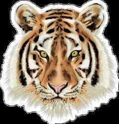 Life Like Tiger Head Sticker