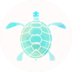 Light Blue Turtle Sticker