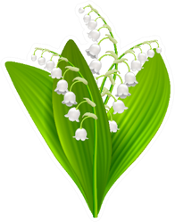Lilly Of The Valley Illustration Sticker