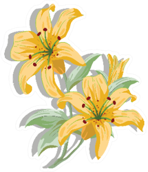 Lily Flower Painting Colored In Yellow Sticker
