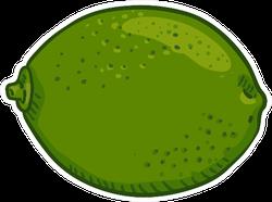 Lime Fruit Sticker