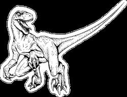 Line Art Velociraptor Illustration