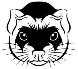 Line Ferret Head Sticker