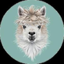 Llama Animal Portrait On Blue Sticker