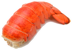 Lobster Tail Isolated On White Sticker