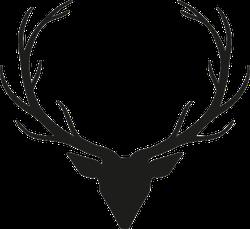 Long Antler Deer Head Sticker