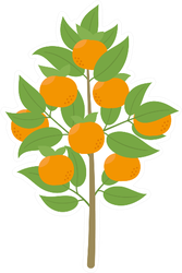 Mandarin Tree Sticker