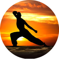 Martial Arts Fitness At Sunset Sticker