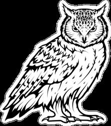 Mean Staring Owl Sticker