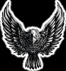 Menacing Eagle Illustration Sticker