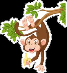 Monkey Hanging And Holding Banana Sticker