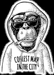 Monkey In The Hoodie Sticker