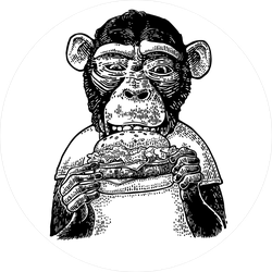Monkey Wearing A T-shirt Eating A Hamburger Sticker