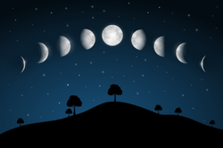 Moon Phases Night Landscape Sticker