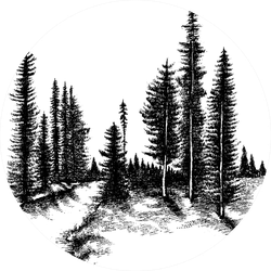 Mountain Forest Pine Trees Sticker
