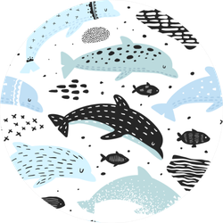 Nautical Seamless Pattern With Dolphins In Child Print Sticker