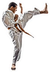One Karate Training Sticker