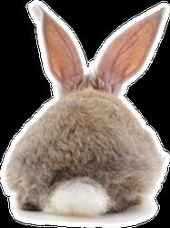 One Rabbit Back Isolated Sticker