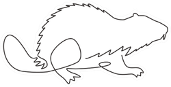 One Single Line Drawing Of Funny Beaver Sticker